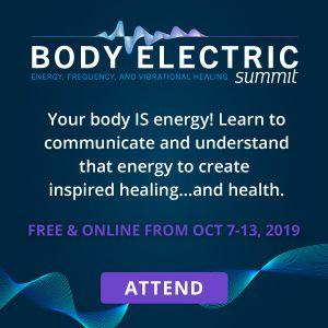 Connect with the Body electric summit